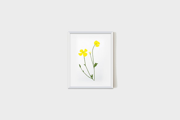 Small Yellow Flower 15X20 cm