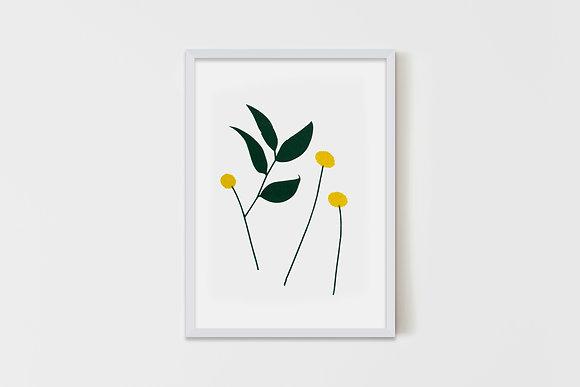 Crespedia Flower #2 15X20 cm