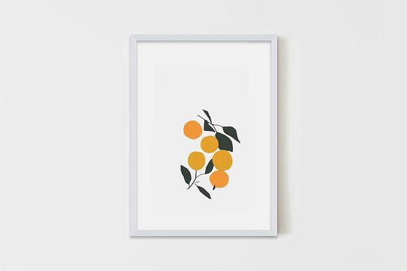 Oranges & Plums 35X50 cm