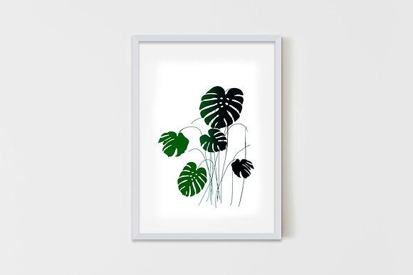 Plant 50X70 cm