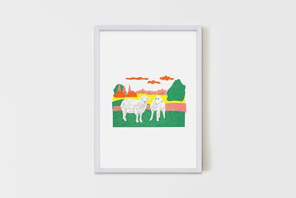 Meadow Sheep 50X70 cm