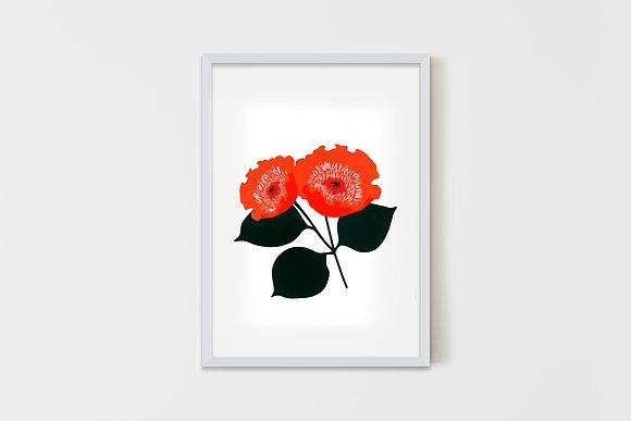 Wild Flower Red  35X50 cm