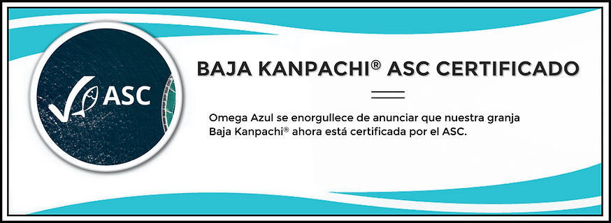ASC Certification Card (Spanish) January