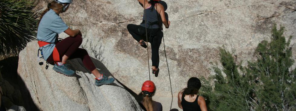 Climbing High into Adventure