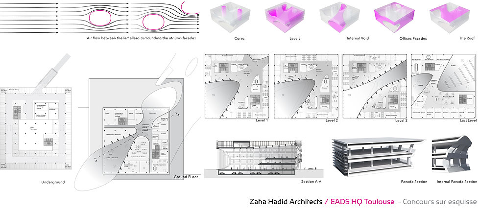 ZHA 6.jpg