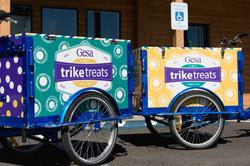 Gesa Tricycle 2