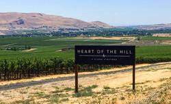 Heart of the Hill Kiona - monument