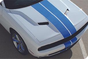 Dual Stripes.jpg