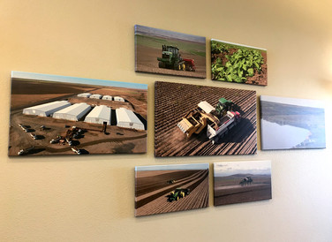 Canvas Photo Wall Mounts