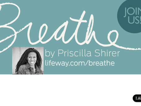 Breathe (Womens Bible Study), by Priscilla Shirer