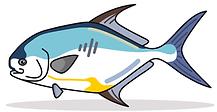 permit ventures logo.PNG