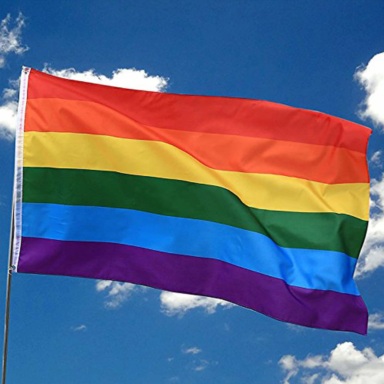 Virtual Open Day for IDAHOT