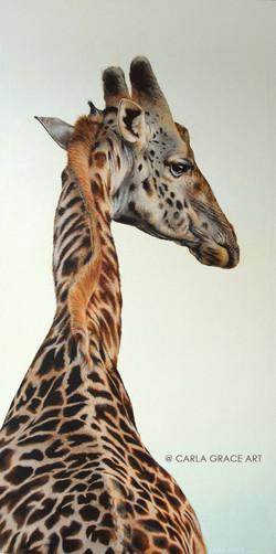 Alfred the Giraffe - SOLD