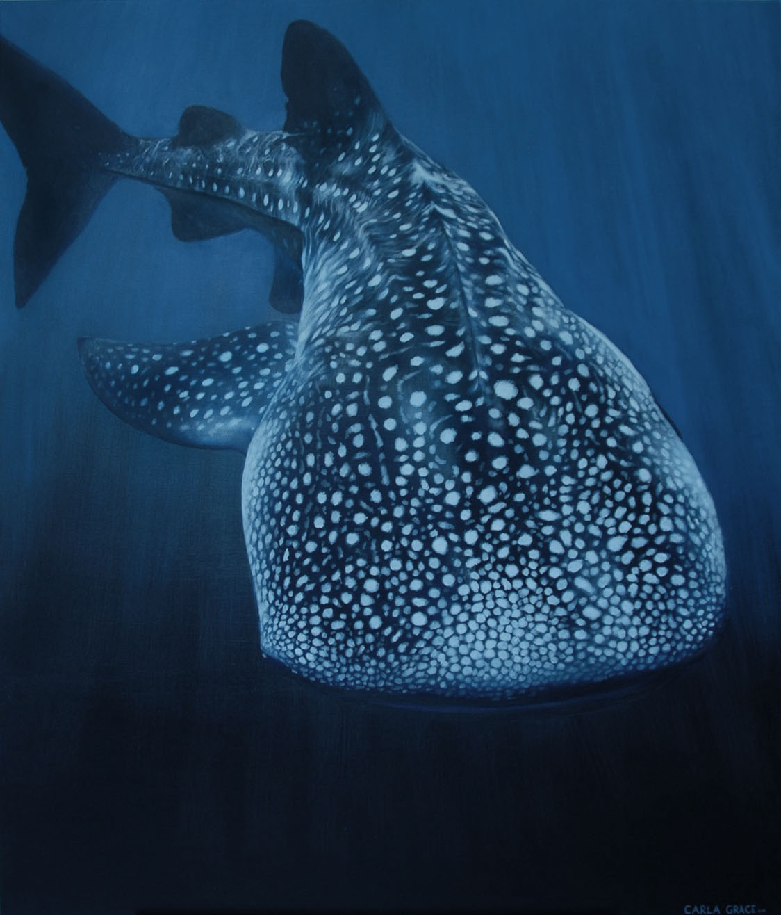 Whale Shark - Sold