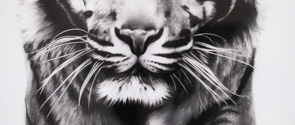 Life Size Tiger Print