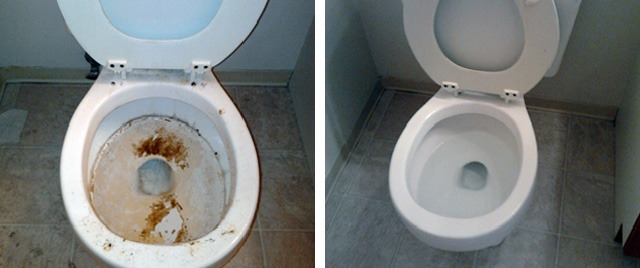 Toilet Before & After