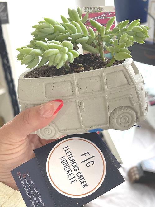 VW Planter with Succulent - Fletchers Concrete