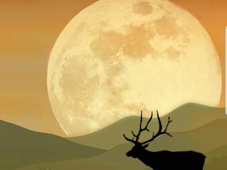 Potluck &  Full Hunter's Moon Fire Ceremony