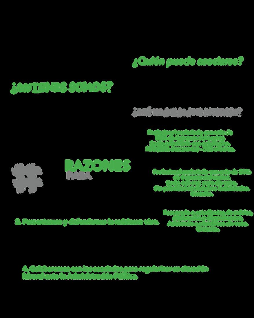 5RAZONES-26.png
