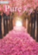 Pure Joy Case Cover Front.jpg