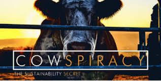Marjon Kok | Cowspiracy