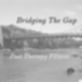 Bridging The Gap (3) website.png