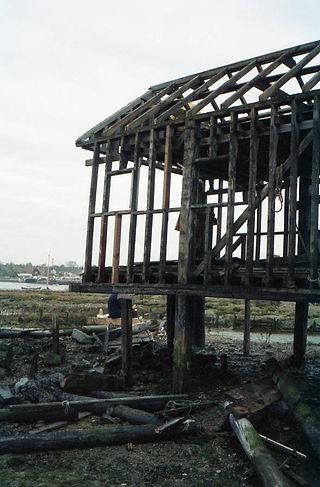shed in need of repair 3.jpg