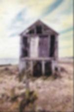 shed in need of repair 2.jpg