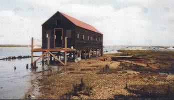 shed being restored 6.jpg