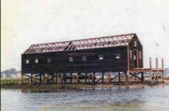 shed being restored 5.jpg