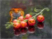 Tomato Frog Reproduction.jpg