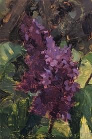 April Lilac
