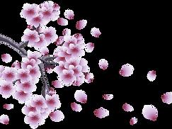 Flores-Flor-Bonita-Lilás-PNG-1200x900.pn