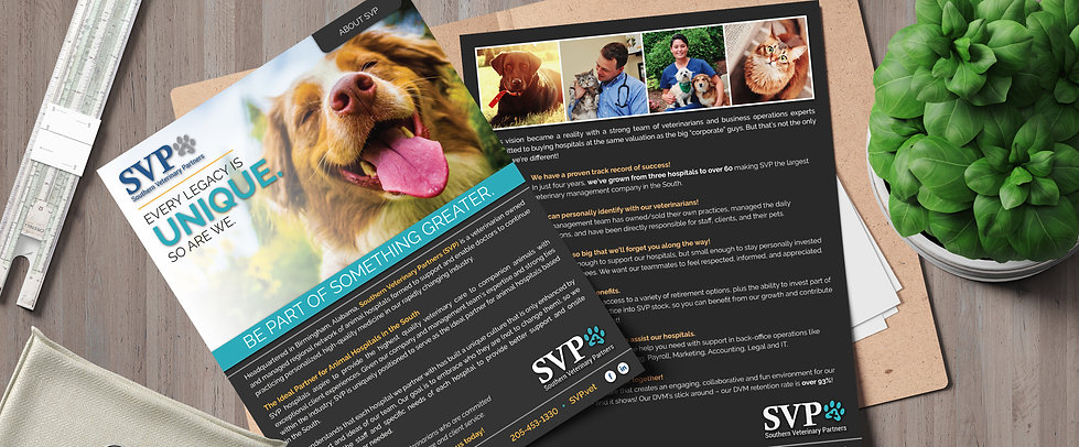 SVP - About Us One Pager.jpg