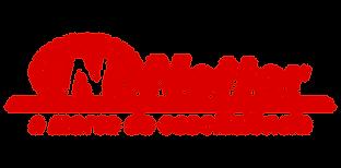 logo netter.png