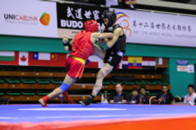 Kickboxing---Los-Angeles-Kung-Fu-Martial-Arts-Wushu_d200.jpg