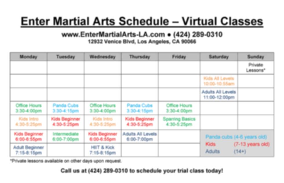 Enter Martial Arts Class Schedule (large