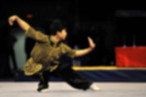 Wushu, Kung fu, los angeles, enter martial arts.jpeg