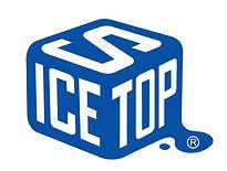 ICESTOP logo