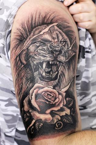Lion bras