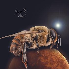 Brune de Mars.jpg