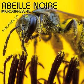 Mirabelle-logo.jpg