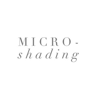 Micro-Shading 2.png