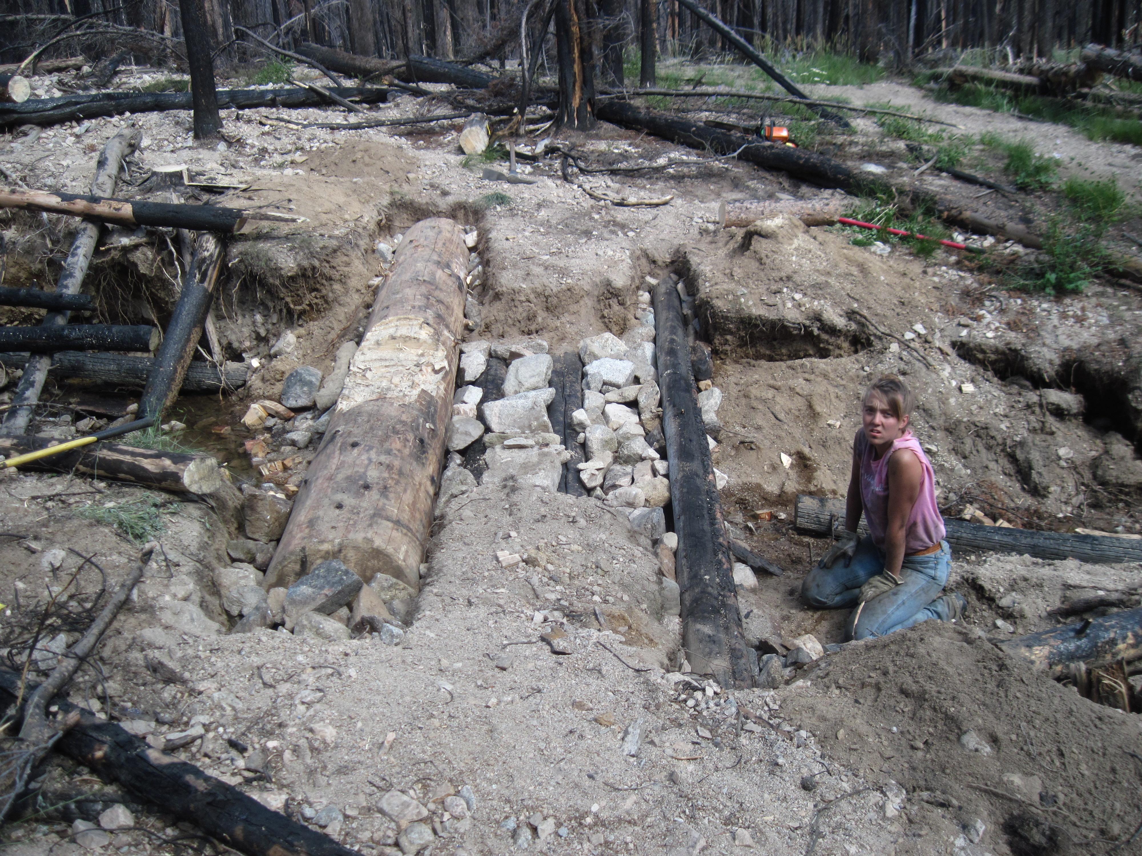 Log work 3