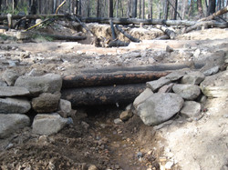 Log Work 4