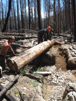 Log work 2