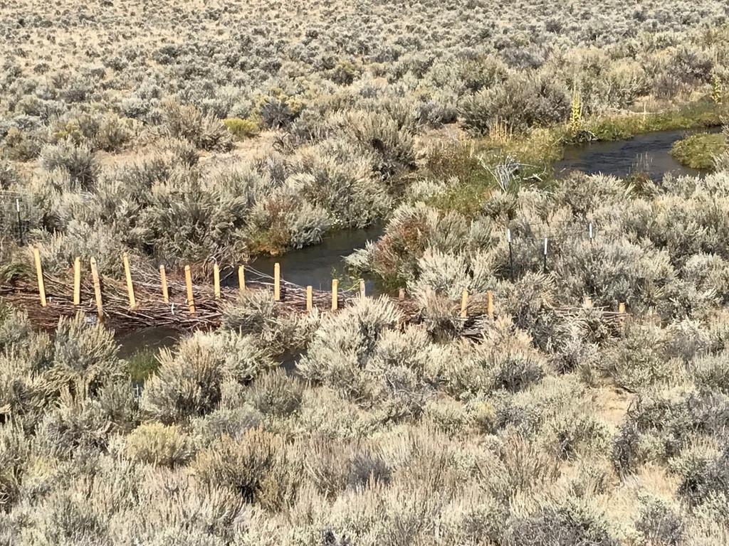 Lower portion on Hawley Creek