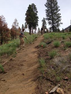 North Zone, Cove Creek Trail