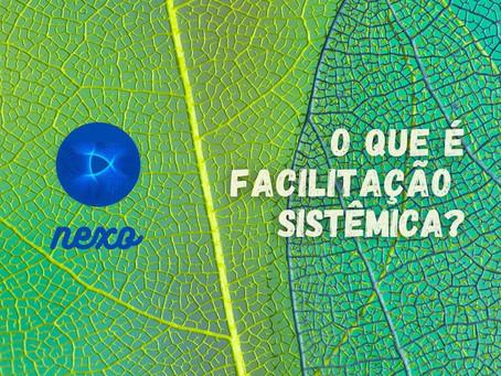 O que é Facilitação Sistêmica?