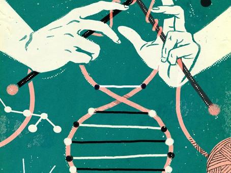 A escolha: da desconexão para a reconexão - por Virgílio Varela